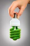 Glühlampe Konzept Eco Lizenzfreies Stockbild