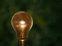 Glühlampe mit grüner zurückhaltender Hintergrundkonzeption für die Idee kreativ stockfotos