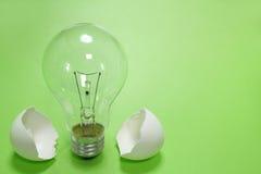 Glühlampe und der Eierschaleabschluß oben im Grün Lizenzfreie Stockbilder