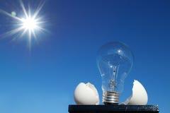 Glühlampe und die Eierschale im Sonnenschein Lizenzfreie Stockfotografie