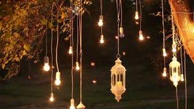 Glühlampen des dekorativen antiken Edison-Artfadens, die im Wald, Glaslaterne, Lampendekorationsgarten an hängen stock video footage