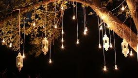 Glühlampen des dekorativen antiken Edison-Artfadens, die im Wald, Glaslaterne, Lampendekorationsgarten an hängen stock footage