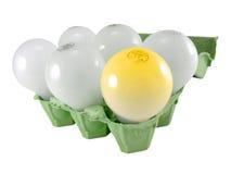 Glühlampen in einem Eikasten lizenzfreie stockfotos