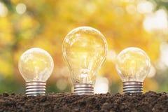 Glühlampen mit dem Glühen Idee, Kreativität und Solarenergie conc Stockfotos
