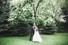 Gl?ckliche Hochzeitspaare, die in einen botanischen Park gehen lizenzfreies stockbild