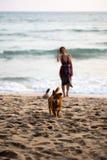 Gl?cklicher Hund, der in Richtung zum Eigent?mer mit einer Frau in einem bunten Kleid im Hintergrund l?uft lizenzfreies stockfoto