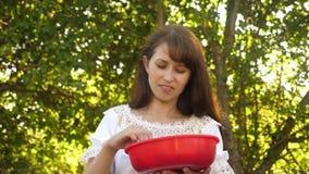 Gl?ckliches M?dchen, das Erdbeeren im Sommer im Garten isst K?stlicher Erdbeere-Nachtisch sch?nes M?dchen isst rote Erdbeere stock video