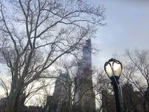 Glaçons accrochant sur le réverbère dans le Central Park dans la neige en hiver pendant le coucher du soleil Photos libres de droits