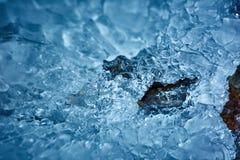 Glaçons d'une cascade congelée Photos libres de droits