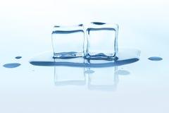 Glaçons de fonte avec la réflexion d'isolement sur le blanc Photographie stock
