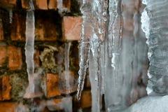 Glaçons de plan rapproché, vieux fond abstrait de mur de briques avec de la glace de fente, mousse, et branches des buissons, gla Photographie stock