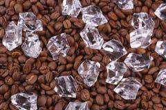 Glaçons et haricots de coffea Image stock