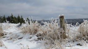 Glace d'hiver sur une barrière Images stock