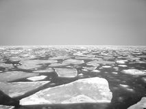 Glace d'iceberg Image stock