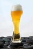 Glace de bière blonde froide Photos stock