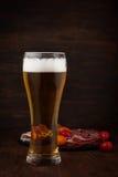 Glace de bière froide Photographie stock libre de droits