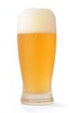 Glace de bière froide avec le chemin Images libres de droits