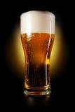 Glace de bière Photos libres de droits