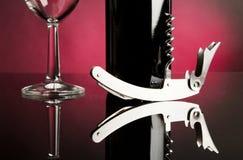 Glace de bouteille et de vin Image stock
