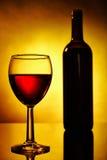 Glace de bouteille et de vin Photographie stock libre de droits