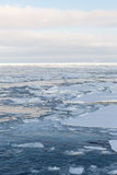 Glace de dérive, mer d'Okhotsk Photographie stock