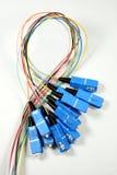 Glace de fibre avec des fiches de Sc-Connecteur Image stock