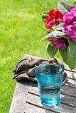 Glace de l'eau tout en faisant du jardinage Photographie stock