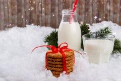 Glace de lait et de biscuits Image stock