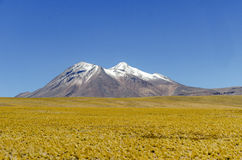 Glace de montagnes dans Atacama Photos stock