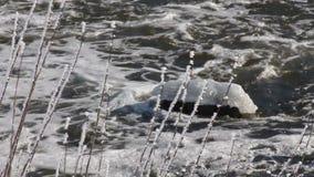 Glace de rivière d'hiver banque de vidéos