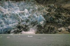 Glace de vêlage sur le glacier de LeConte Photos libres de droits