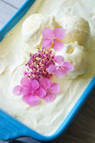 Glace de vanille Image libre de droits