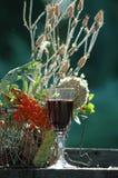 Glace de vin photographie stock