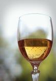 Glace de vin mousseux Image stock