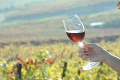 Glace de vin rouge Photos libres de droits