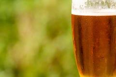Glace froide de bière avec de la mousse Images libres de droits