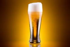 Glace givrée de bière blonde Images libres de droits