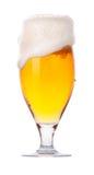 Glace givrée de bière blonde avec de la mousse   Image libre de droits