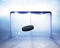 Glace-hockey de but Image stock