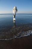 Glace sur le pylône figé   Photographie stock libre de droits