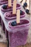 Glaces à l'eau faites maison avec le plan rapproché de myrtille et de yaourt photographie stock libre de droits