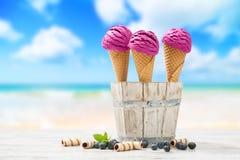 Glaces à la plage Photographie stock libre de droits