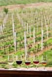 Glaces avec du vin Vin rouge, rose, blanc en verres Photographie stock libre de droits