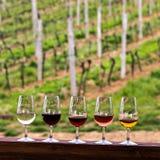 Glaces avec du vin Vin rouge, rose, blanc en verres Images libres de droits