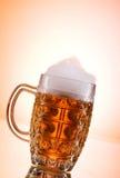 Glaces de bière Photographie stock