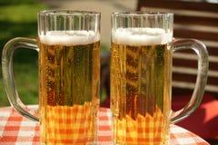 Glaces de bière Image libre de droits