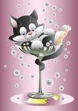 Glaces de champagne de chat Photo libre de droits