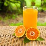 Glaces de jus d'orange Photos libres de droits