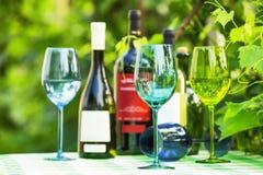 Glaces de vin colorées Images libres de droits