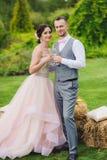 Glaces de vin de fixation de mariée et de marié Photographie stock libre de droits